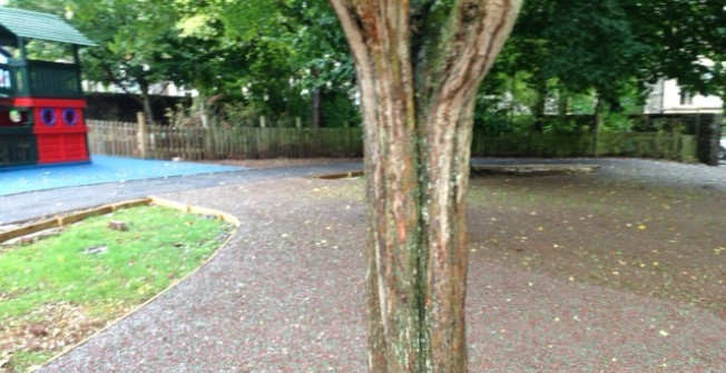Woodland Mulch Surfaces in Terrydremont